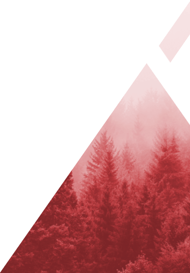 Alihankinta 2019 -messujen kuvituskuva, jossa punaisen kolmion sisällä näkyy metsää